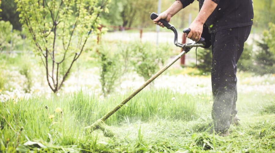 Mangler du hjælp til at få haven sommerklar?